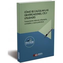 EL PROCESO CONSTITUCIONAL DE AMPARO