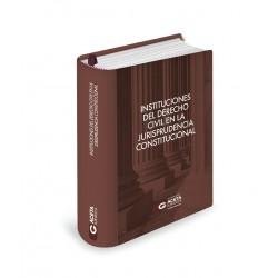 INSTITUCIONES DEL DERECHO CIVIL EN LA JURISPRUDENCIA CONSTITUCIONAL
